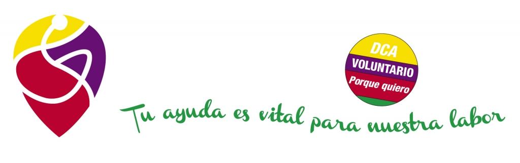 web cabecera voluntariado
