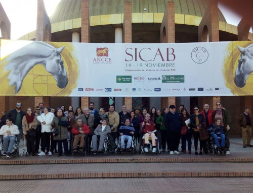 Otro año más en el SICAB