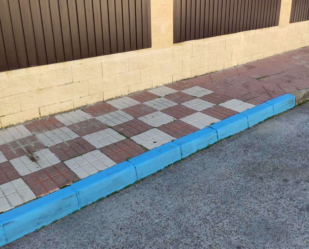 plaza-aparcamiento-daño-cerebral-adquirido